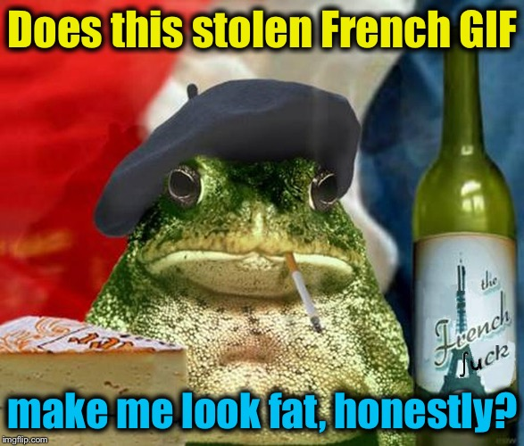 Does this stolen French GIF make me look fat, honestly? | made w/ Imgflip meme maker