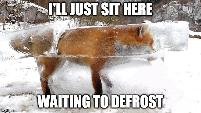 I'LL JUST SIT HERE WAITING TO DEFROST | made w/ Imgflip meme maker