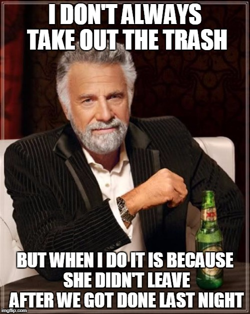 The Most Interesting Man In The World Meme | I DON'T ALWAYS TAKE OUT THE TRASH BUT WHEN I DO IT IS BECAUSE SHE DIDN'T LEAVE AFTER WE GOT DONE LAST NIGHT | image tagged in memes,the most interesting man in the world | made w/ Imgflip meme maker