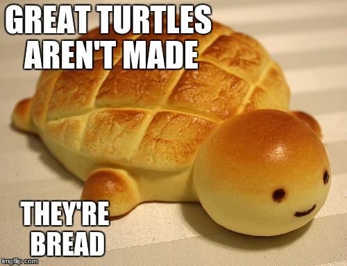Humans Are Bread Too | GREAT TURTLES AREN'T MADE THEY'RE BREAD | image tagged in bread,turtle,memes | made w/ Imgflip meme maker