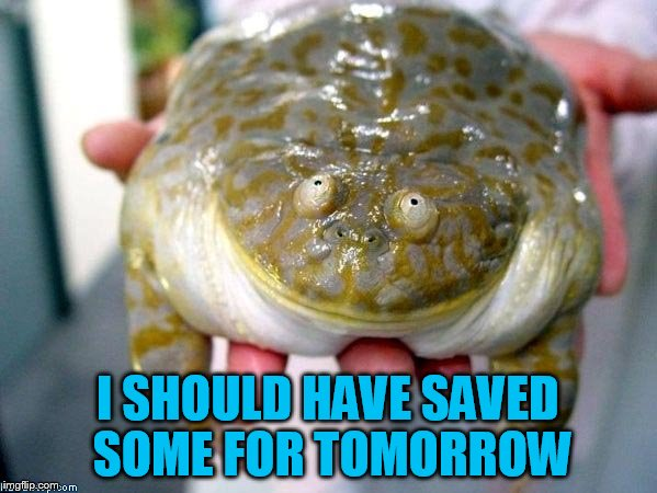 I SHOULD HAVE SAVED SOME FOR TOMORROW | made w/ Imgflip meme maker