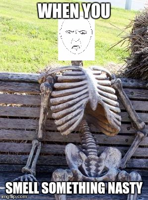 Disgusted Skeleton | WHEN YOU SMELL SOMETHING NASTY | image tagged in memes,waiting skeleton,disgust,nasty | made w/ Imgflip meme maker