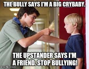 THE BULLY SAYS I'M A BIG CRYBABY. THE UPSTANDER SAYS I'M A FRIEND. STOP BULLYING! | image tagged in bullying | made w/ Imgflip meme maker