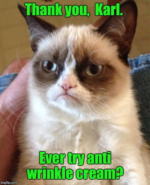 Grumpy Cat Meme | Thank you,  Karl. Ever try anti wrinkle cream? | image tagged in memes,grumpy cat | made w/ Imgflip meme maker