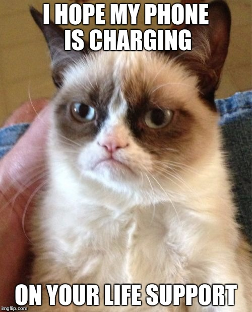 Grumpy Cat Meme | I HOPE MY PHONE IS CHARGING ON YOUR LIFE SUPPORT | image tagged in memes,grumpy cat | made w/ Imgflip meme maker