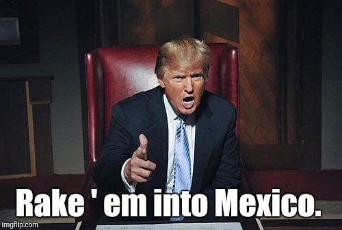 Rake ' em into Mexico. | made w/ Imgflip meme maker