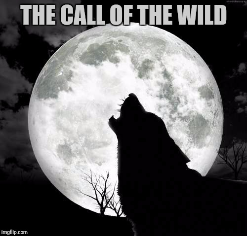 THE CALL OF THE WILD | made w/ Imgflip meme maker