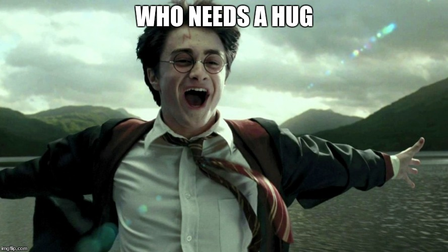 Harry potter hugs | WHO NEEDS A HUG | image tagged in harry potter | made w/ Imgflip meme maker