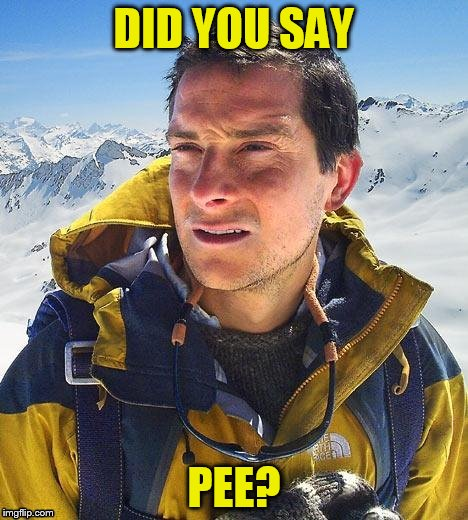 DID YOU SAY PEE? | made w/ Imgflip meme maker