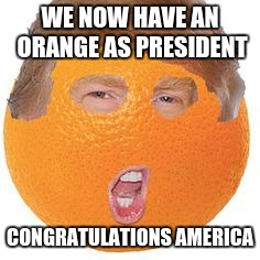 Well done America | WE NOW HAVE AN ORANGE AS PRESIDENT CONGRATULATIONS AMERICA | image tagged in orange,stupidity | made w/ Imgflip meme maker