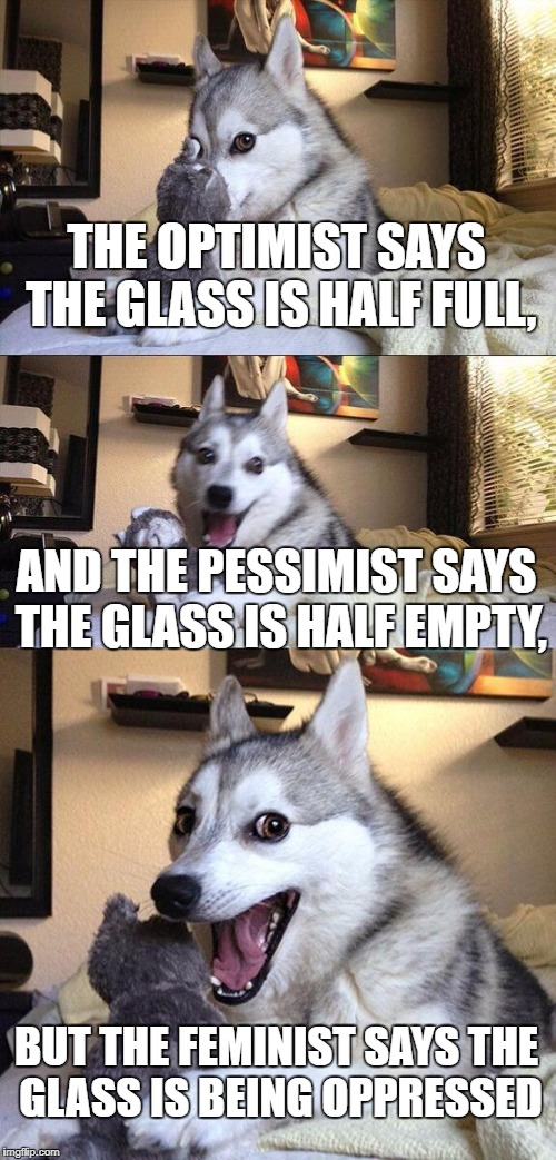 Not a pun, just wanted to share some thoughts | THE OPTIMIST SAYS THE GLASS IS HALF FULL, AND THE PESSIMIST SAYS THE GLASS IS HALF EMPTY, BUT THE FEMINIST SAYS THE GLASS IS BEING OPPRESSED | image tagged in memes,bad pun dog | made w/ Imgflip meme maker