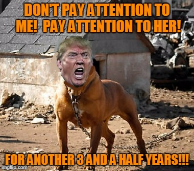 DON'T PAY ATTENTION TO ME!  PAY ATTENTION TO HER! FOR ANOTHER 3 AND A HALF YEARS!!! | made w/ Imgflip meme maker
