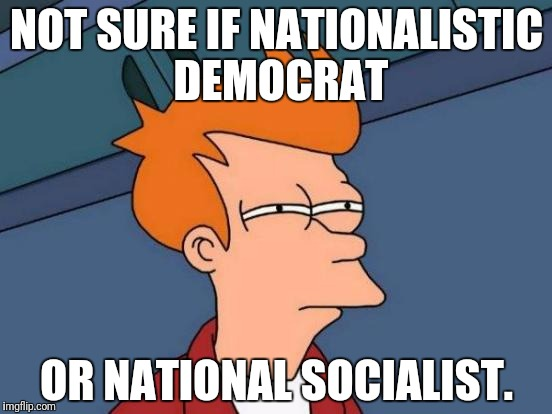 Futurama Fry Meme | NOT SURE IF NATIONALISTIC DEMOCRAT OR NATIONAL SOCIALIST. | image tagged in memes,futurama fry | made w/ Imgflip meme maker