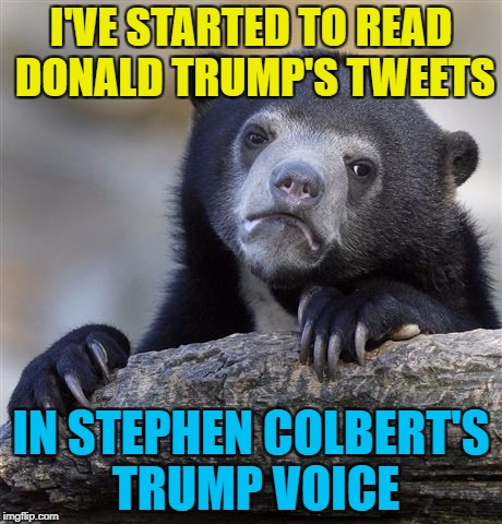 I can't be the only one, can I? :) | I'VE STARTED TO READ DONALD TRUMP'S TWEETS IN STEPHEN COLBERT'S TRUMP VOICE | image tagged in memes,confession bear,twitter,donald trump,stephen colbert,tweets | made w/ Imgflip meme maker