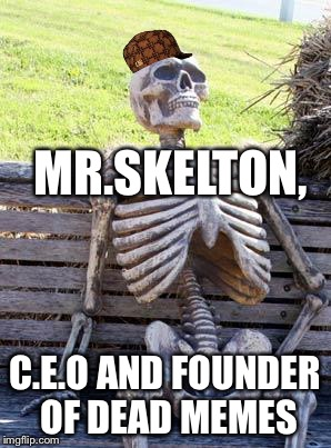 Waiting Skeleton Meme | MR.SKELTON, C.E.O AND FOUNDER OF DEAD MEMES | image tagged in memes,waiting skeleton,scumbag | made w/ Imgflip meme maker