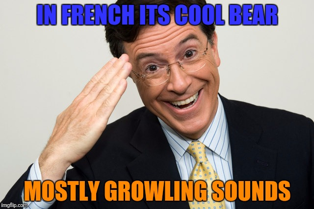 IN FRENCH ITS COOL BEAR MOSTLY GROWLING SOUNDS | made w/ Imgflip meme maker