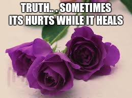 TRUTH.. . SOMETIMES ITS HURTS WHILE IT HEALS | image tagged in purple roses | made w/ Imgflip meme maker