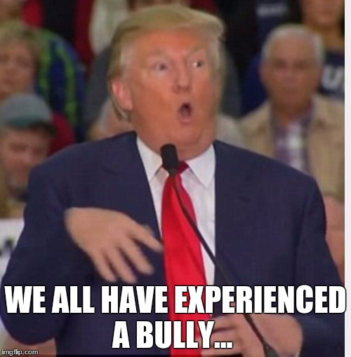 Donald Trump tho | WE ALL HAVE EXPERIENCED A BULLY... | image tagged in donald trump tho | made w/ Imgflip meme maker