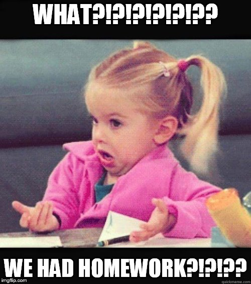 WHAT?!?!?!?!?!?? WE HAD HOMEWORK?!?!?? | image tagged in dogs | made w/ Imgflip meme maker