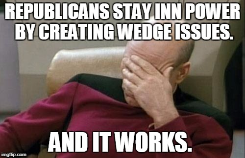 Captain Picard Facepalm Meme | REPUBLICANS STAY INN POWER BY CREATING WEDGE ISSUES. AND IT WORKS. | image tagged in memes,captain picard facepalm | made w/ Imgflip meme maker