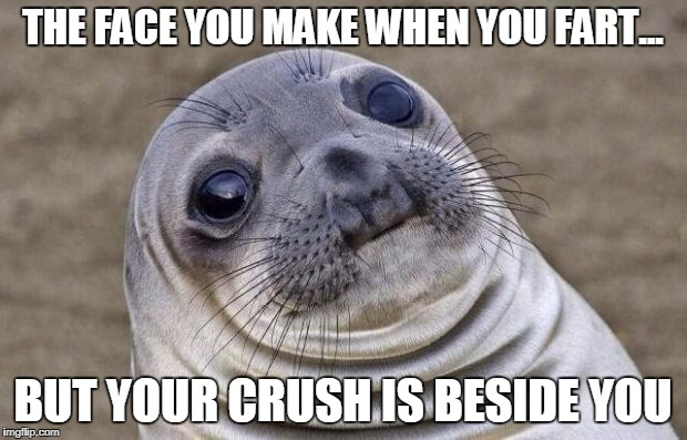 Awkward Moment Sealion Meme | THE FACE YOU MAKE WHEN YOU FART... BUT YOUR CRUSH IS BESIDE YOU | image tagged in memes,awkward moment sealion | made w/ Imgflip meme maker