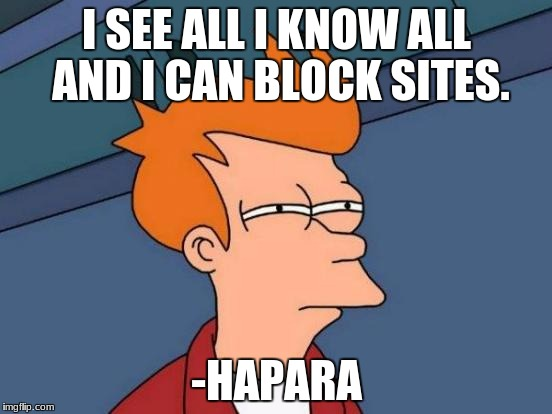 Futurama Fry Meme | I SEE ALL I KNOW ALL AND I CAN BLOCK SITES. -HAPARA | image tagged in memes,futurama fry | made w/ Imgflip meme maker