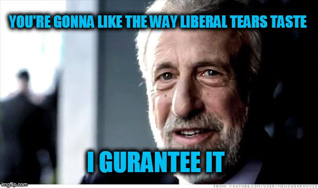 I Guarantee It Meme | YOU'RE GONNA LIKE THE WAY LIBERAL TEARS TASTE I GURANTEE IT | image tagged in memes,i guarantee it | made w/ Imgflip meme maker