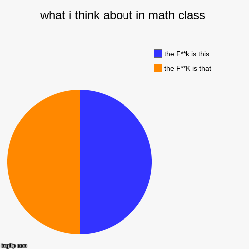 what i think about in math class | the F**K is that, the F**k is this | image tagged in funny,pie charts | made w/ Imgflip pie chart maker