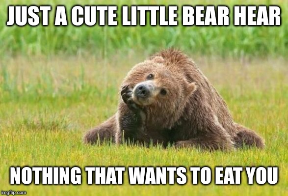 JUST A CUTE LITTLE BEAR HEAR NOTHING THAT WANTS TO EAT YOU | image tagged in funny,funny memes,funny meme,bear | made w/ Imgflip meme maker