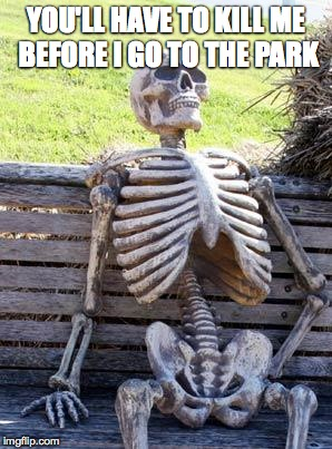 Waiting Skeleton Meme | YOU'LL HAVE TO KILL ME BEFORE I GO TO THE PARK | image tagged in memes,waiting skeleton | made w/ Imgflip meme maker