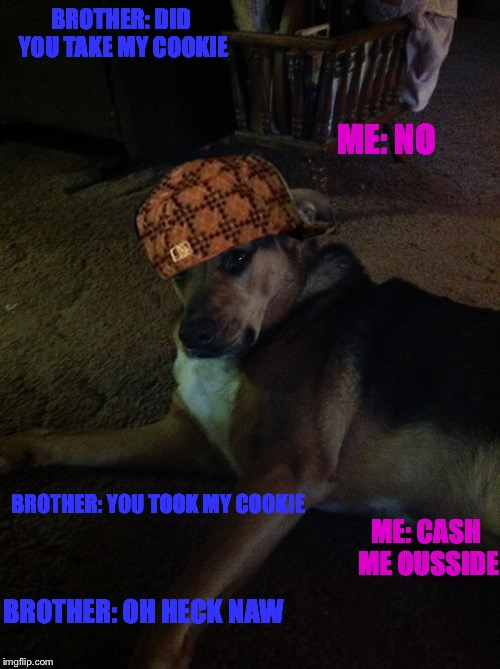 Douchebag Dawg | BROTHER: DID YOU TAKE MY COOKIE ME: NO BROTHER: YOU TOOK MY COOKIE ME: CASH ME OUSSIDE BROTHER: OH HECK NAW | image tagged in cookies | made w/ Imgflip meme maker