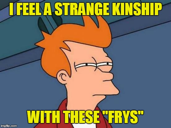 "Futurama Fry Meme | I FEEL A STRANGE KINSHIP WITH THESE ""FRYS"" 