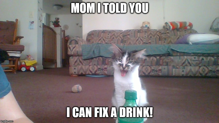 I Can Fix A Drink | MOM I TOLD YOU I CAN FIX A DRINK! | image tagged in memes | made w/ Imgflip meme maker