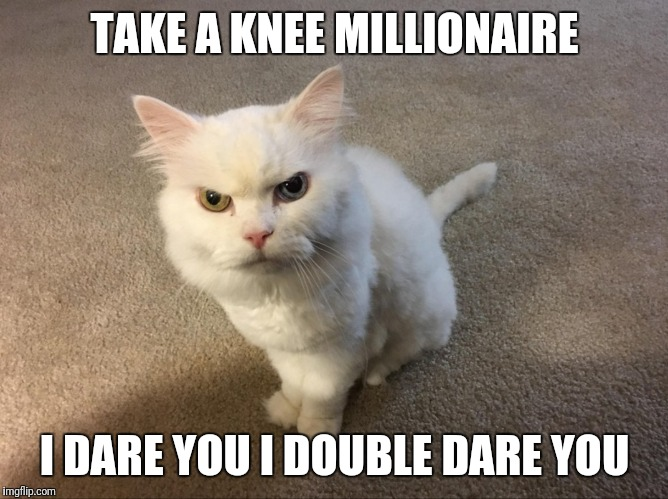 TAKE A KNEE MILLIONAIRE I DARE YOU I DOUBLE DARE YOU | image tagged in take a knee | made w/ Imgflip meme maker