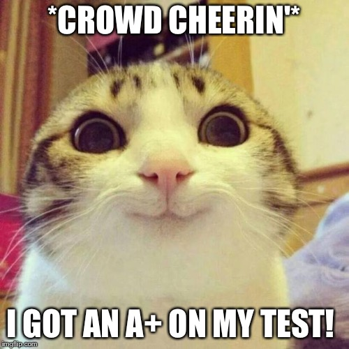 Smiling Cat Meme | *CROWD CHEERIN'* I GOT AN A+ ON MY TEST! | image tagged in memes,smiling cat | made w/ Imgflip meme maker