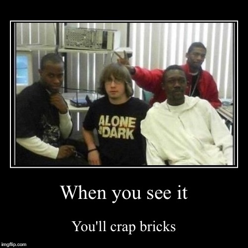 When you see it (hint shirt) | When you see it | You'll crap bricks | image tagged in funny,demotivationals | made w/ Imgflip demotivational maker