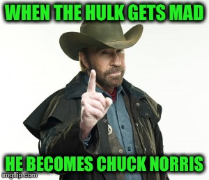 Chuck Norris  | WHEN THE HULK GETS MAD HE BECOMES CHUCK NORRIS | image tagged in chuck norris | made w/ Imgflip meme maker