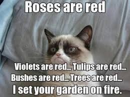 At least I don't lie | image tagged in grumpy cat | made w/ Imgflip meme maker