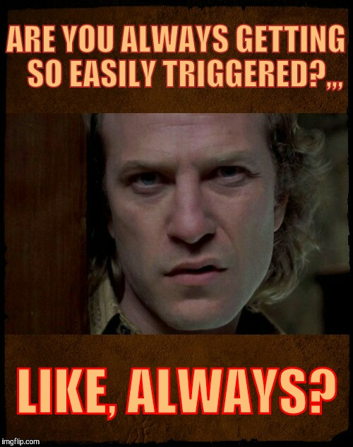 ARE YOU ALWAYS GETTING   SO EASILY TRIGGERED?,,, LIKE, ALWAYS? | image tagged in buffalo bill,are you serious | made w/ Imgflip meme maker