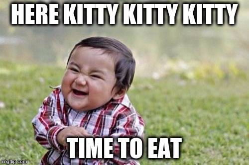Evil Toddler Meme | HERE KITTY KITTY KITTY TIME TO EAT | image tagged in memes,evil toddler | made w/ Imgflip meme maker