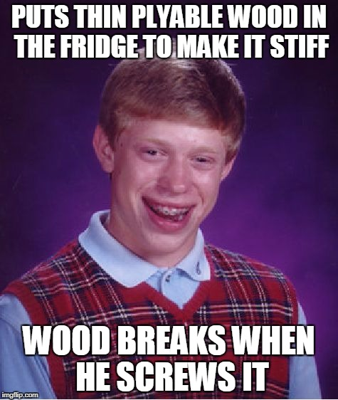 Bad Luck Brian Meme | PUTS THIN PLYABLE WOOD IN THE FRIDGE TO MAKE IT STIFF WOOD BREAKS WHEN HE SCREWS IT | image tagged in memes,bad luck brian | made w/ Imgflip meme maker