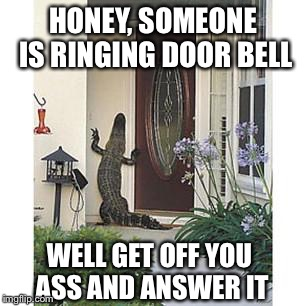 Alligator at the door | HONEY, SOMEONE IS RINGING DOOR BELL WELL GET OFF YOU ASS AND ANSWER IT | image tagged in alligator,door bell,home,answer,bad luck | made w/ Imgflip meme maker