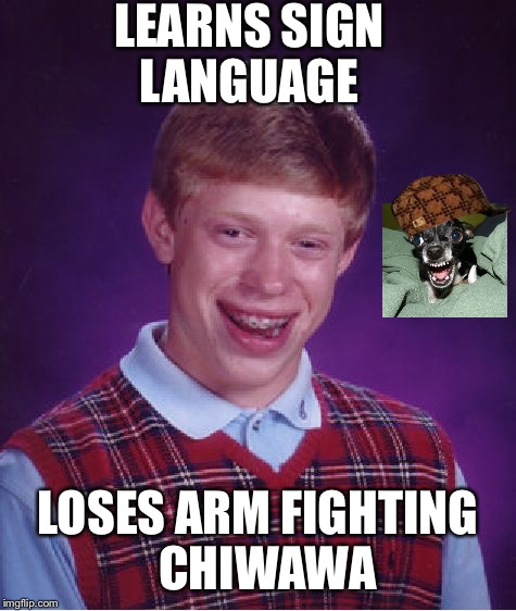 Bad Luck Brian Meme | LEARNS SIGN LANGUAGE LOSES ARM FIGHTING  CHIWAWA | image tagged in memes,bad luck brian,scumbag | made w/ Imgflip meme maker
