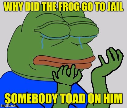 pepe cry | WHY DID THE FROG GO TO JAIL SOMEBODY TOAD ON HIM | image tagged in pepe cry | made w/ Imgflip meme maker