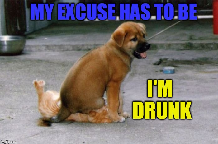 Oh My! | MY EXCUSE HAS TO BE I'M DRUNK | image tagged in memes,drunk dog,excuses,sitting,on the cat,unbelievable | made w/ Imgflip meme maker