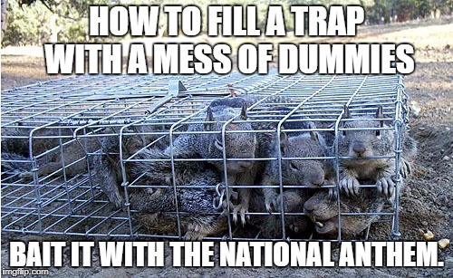 Good. The media's got you looking in the wrong direction. | HOW TO FILL A TRAP WITH A MESS OF DUMMIES BAIT IT WITH THE NATIONAL ANTHEM. | image tagged in brainwashed,media,football,beer,puppies | made w/ Imgflip meme maker