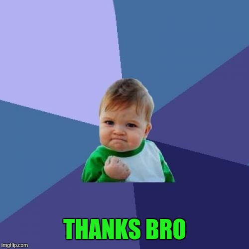 Success Kid Meme | THANKS BRO | image tagged in memes,success kid | made w/ Imgflip meme maker