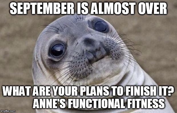Awkward Moment Sealion Meme | SEPTEMBER IS ALMOST OVER WHAT ARE YOUR PLANS TO FINISH IT?          ANNE'S FUNCTIONAL FITNESS | image tagged in memes,awkward moment sealion | made w/ Imgflip meme maker
