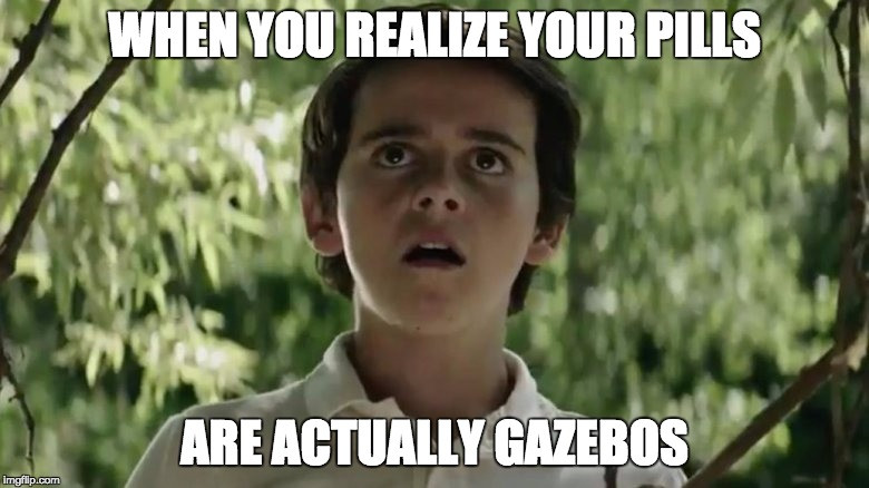 WHEN YOU REALIZE YOUR PILLS ARE ACTUALLY GAZEBOS | image tagged in gazebos | made w/ Imgflip meme maker