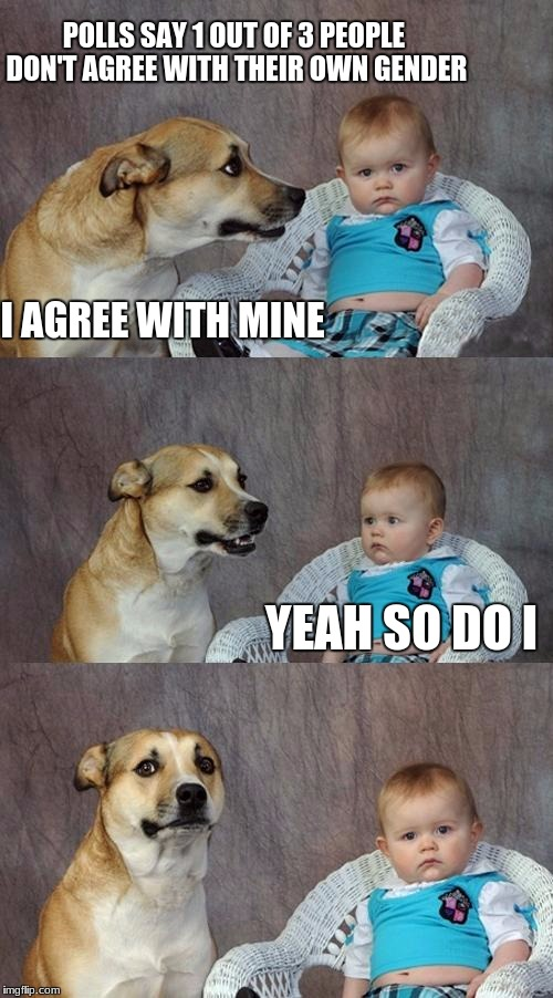 Dad Joke Dog Meme | POLLS SAY 1 OUT OF 3 PEOPLE DON'T AGREE WITH THEIR OWN GENDER I AGREE WITH MINE YEAH SO DO I | image tagged in memes,dad joke dog | made w/ Imgflip meme maker